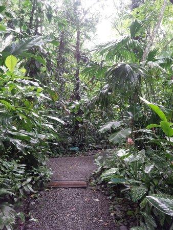 La Kukula Lodge : parc