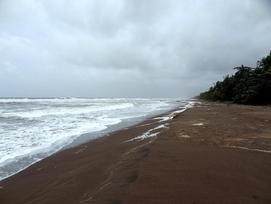 Mawamba Lodge: plage sur atlantique