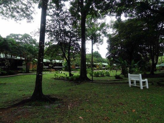 Mawamba Lodge: parc interieur