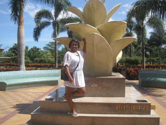 Hotel Riu Guanacaste : Me next to Hotel fountain