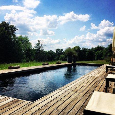 Chateau La Thuiliere : La piscine, parfaite pour faire des longueurs