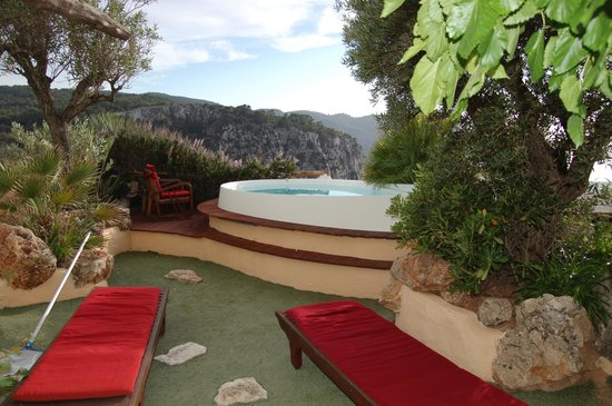 Hacienda Na Xamena : Our private swimming pool with the artificial turf
