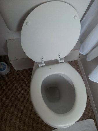 Park Manor Hotel : Chipped toilet seat