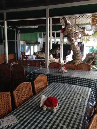 Jemma's Seaview Kitchen: Tree view