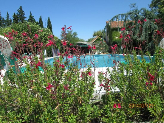 Hotel du Moulin d'Aure : piscine spacieuse