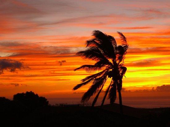 Kona Kozy's Comedy & Magic Show: Waikoloa Sunset