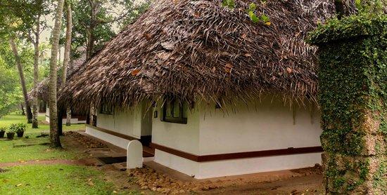 Marari Beach Resort: Villa