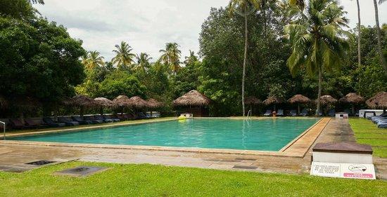 Marari Beach Resort : Resort pool