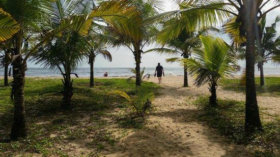Marari Beach Resort : Beach through the coconut trees