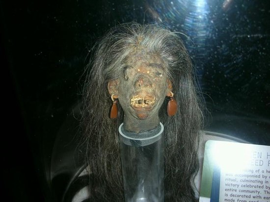 Shrinked head  From an old africal ritual  - Picture of
