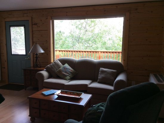 Currant Ridge: Living area with pull-out couch