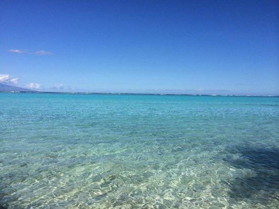 Temae Beach : Beautiful water, so clear!