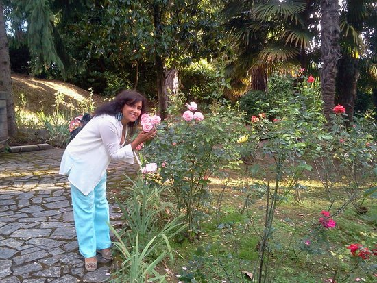 Hotel Garden: le rose dell'hotel...