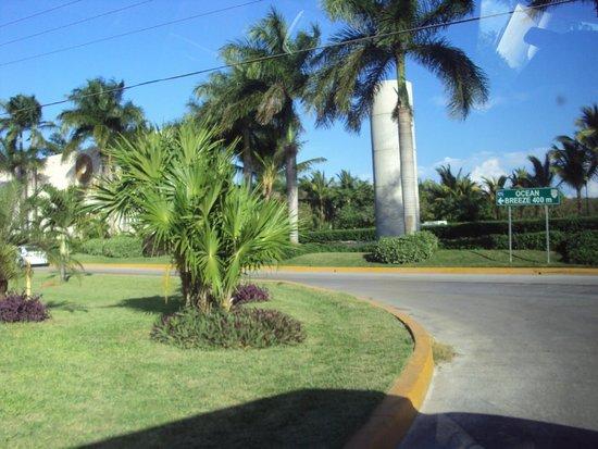 Ocean Breeze Riviera Maya Hotel: muita área verde e tudo muito bem cuidado