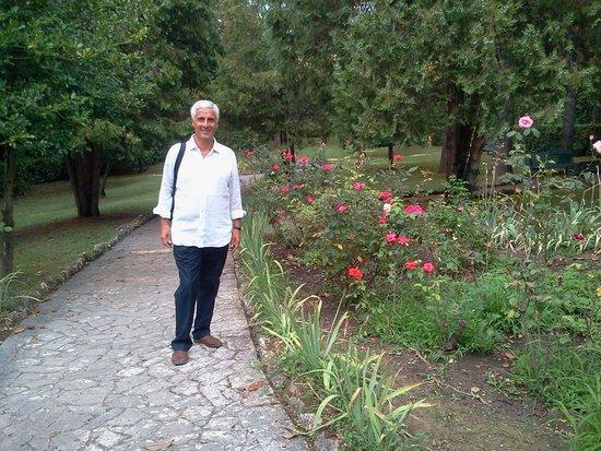 Hotel Garden: il parco....