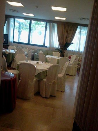 Hotel Garden: la sala interna...
