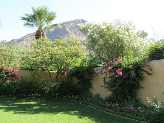Royal Palms Resort and Spa: view