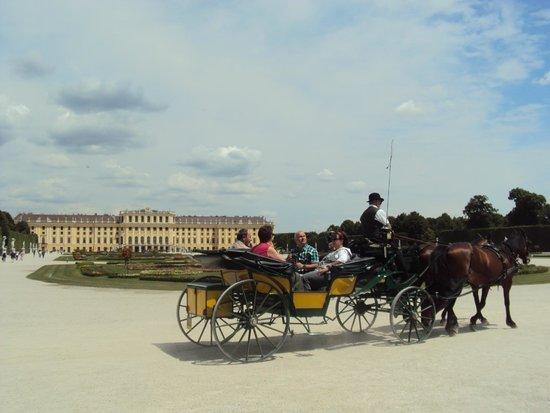 Château de Schönbrunn : tem passeio de carruagem