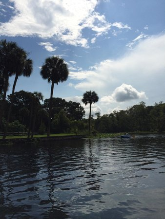 Silver Springs State Park: Great views!