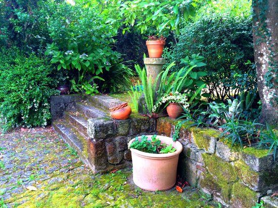 Quinta da roseira garden