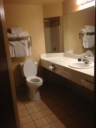 The Grand Hotel at the Grand Canyon : Toilet area