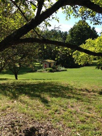 Berkshire Botanical Garden: Martha Stewart garden shed installation