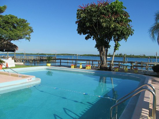 Dockside Inn & Resort: Pool
