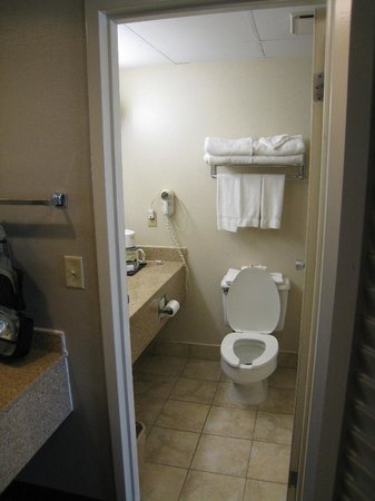 BEST WESTERN Executive Hotel of New Haven-West Haven: bathroom