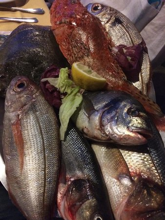 Le Grottelle: Il pesce fresco