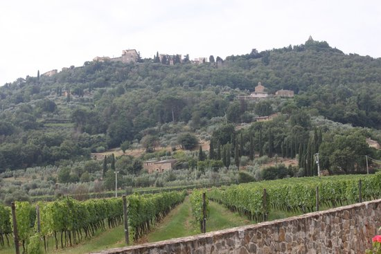 Tuscan Trails: The second winery