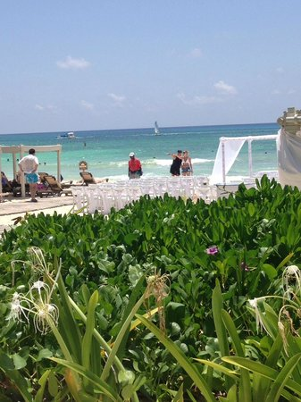 The Royal Playa del Carmen: Between the pool and beach