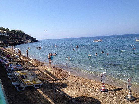Grand Efe Hotel: Plaj