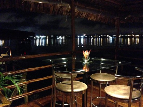 Al Frio y Al Fuego : Beautiful Amazon Night view