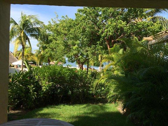 The St. Regis Punta Mita Resort: Ocean View Room