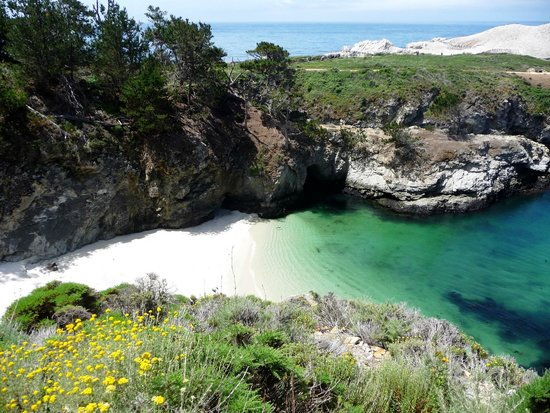 Point Lobos State Reserve: China Cove