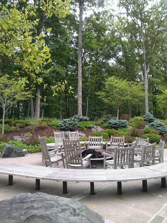 The Lodge at Woodloch: Fire pit