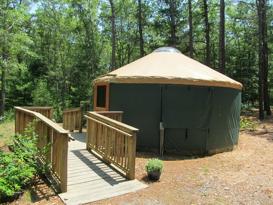 Shawme-Crowell State Forest: Yurt