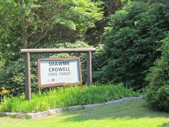 Shawme-Crowell State Forest: Entrée du Parc