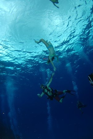 Epic Divers: Fun for both divers and snorkelers!