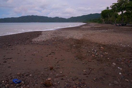Barcelo Tambor : Verdadero aspecto de la playa del hotel, hay otras preciosas, pero esta no!