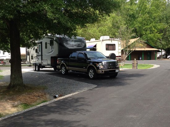 Kings Dominion Camp Wilderness Campground: Premium site
