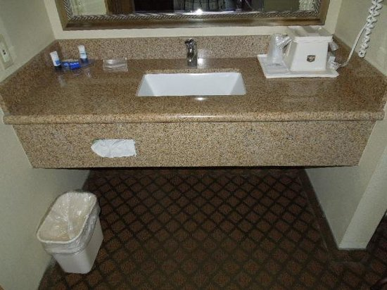Best Western John Day Inn : Sink