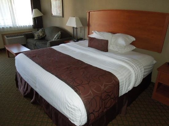 Best Western John Day Inn : Bed and Sofa/Hide-a-Bed