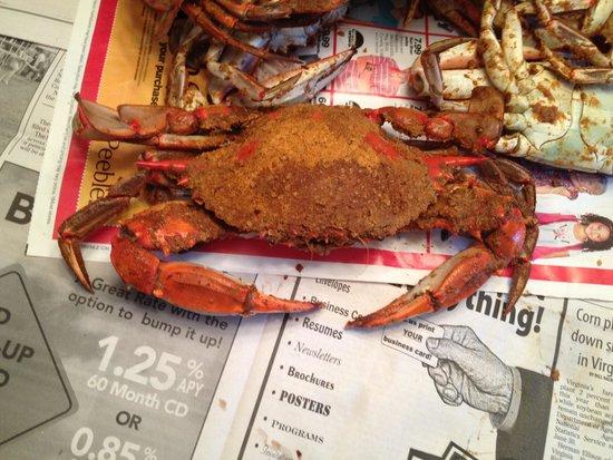Daniels' Whalebone Seafood Market : See what I mean??
