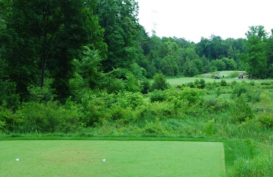 Otterville, Canada: 8th hole at Otter Creek, weaving in and about the creek - talk about target golf!