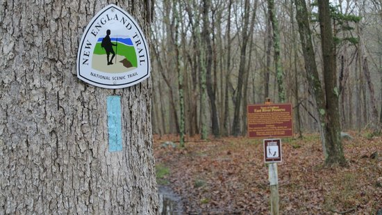 Guilford, CT: Clapboard Hill Rd trailhead (where trail goes off into the wild)