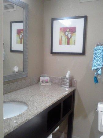 Holiday Inn Clinton - Bridgewater : Bathroom at Holiday Inn Clinton