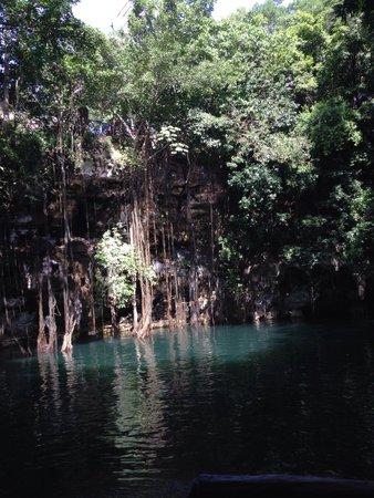 Cenote Yokdzonot : Así es realmente