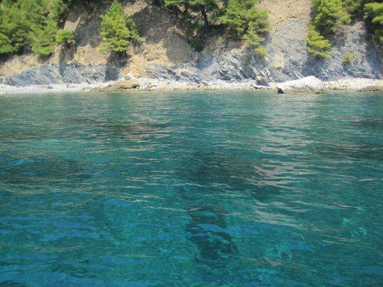 Clear & warm water - Billede af National Marine Park of ...