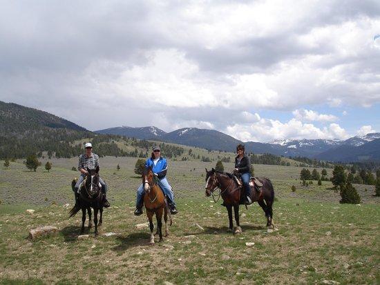 Canyon Adventures Horseback Day Tours: Montana 2014 - Canyon Adventures